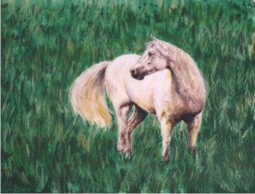 White Mare in Grass